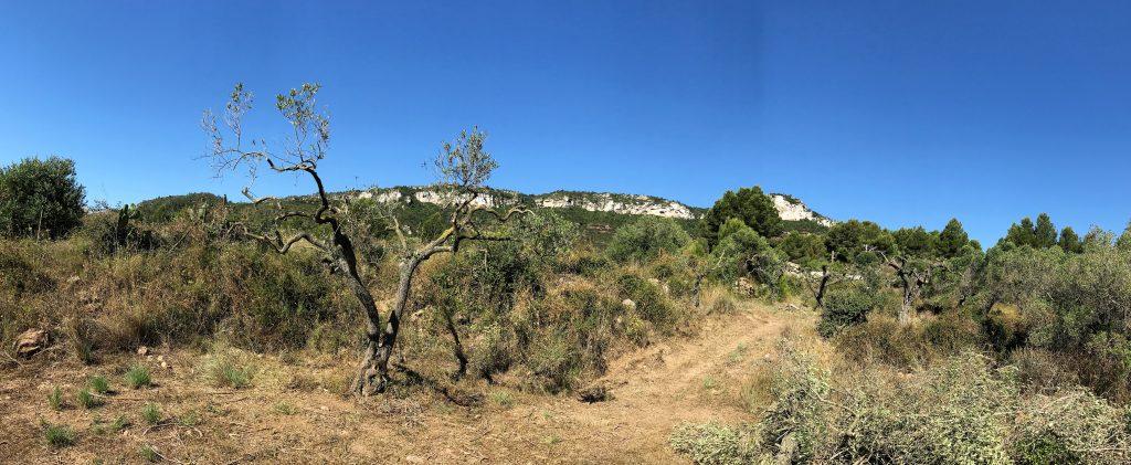 Spain Mountain Panorama